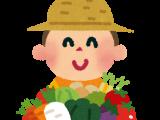 第2・3回親子農業体験を開催しました