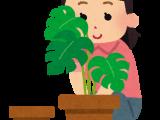 女性部犬山支部が園芸教室を開催