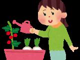 家庭菜園を行う人向けの農業講座開催
