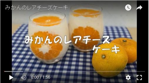 【動画】みかんのレアチーズケーキ「フレッシュ愛ちゃんネル」で紹介