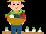 農家さんの 新鮮 野菜販売