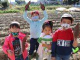 Let`sチャレンジ!親子農業体験 さつまいもの収穫体験を開催しました