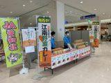 「江南野菜カレー」の特別販売をおこないました