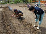 農業塾「家庭菜園コース」第3回目開催しました