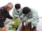 チャレンジ農業講座「夏野菜の栽培について」が開催されました
